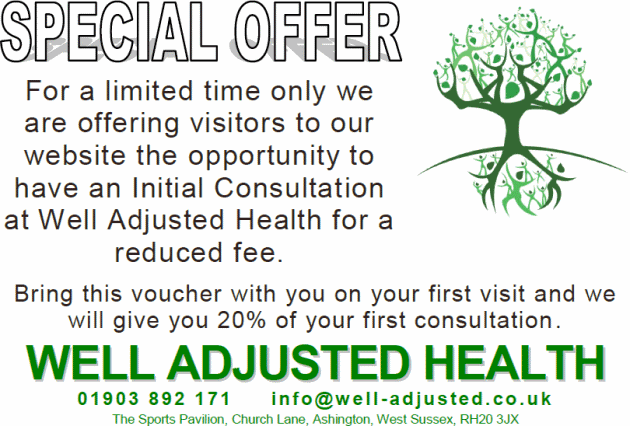 Well Adjusted Health Voucher Initial Chiropractic Treatment Offer